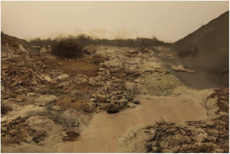Christiaan Zwanikken, « Scorched Earth » : un monde post-humain